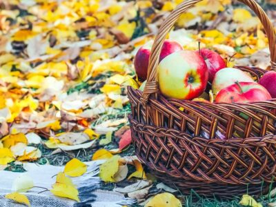 basket of apples surrounded by fall leaves