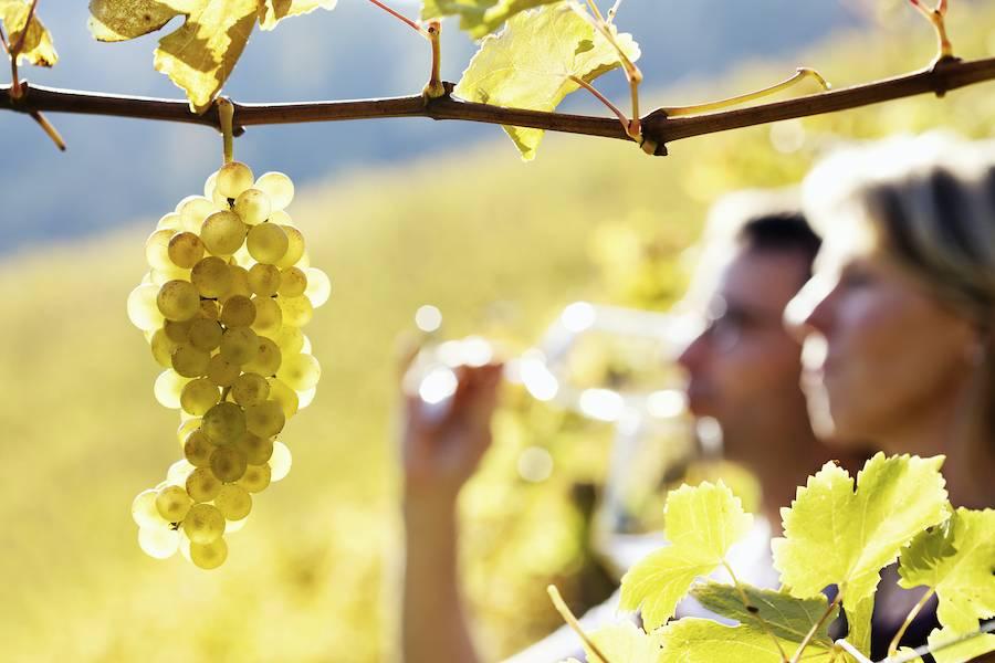 wine tasting on the Seneca Lake wine trail